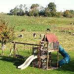  Rayba Acres Playground.