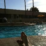  Relaxing by the pool at the Four Points Sheraton Phoenix West.