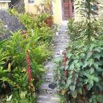 Foto de Rafjam's Bed & Breakfast, Blue Mountain Cottages and Nature