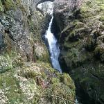  Aira Force - 20 mins drive from Norcroft B&amp;B