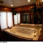 Jacuzzi and shower in suite