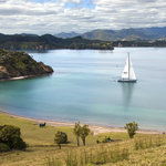 Sailing in the beautiful Bay of Islands