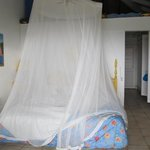  Mosquito net over the bed.  Didn&#39;t need it most nights...there were very few mosquitos.  All it 
