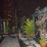 rooftop garden by night