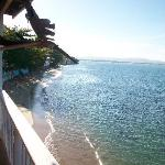 Foto de LemonTree Oceanfront Cottages