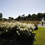 Wellington Botanic Garden