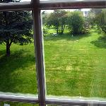  View of large backyard from room