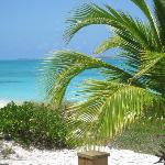 Photo of Paradise Bay Bahamas