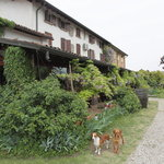 Agriturismo La Pace