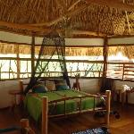Foto van Cotton Tree Lodge
