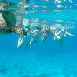 Hawaiian Paddle Sports - Private Tours