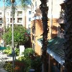 Foto di Courtyard Orlando Lake Buena Vista in the Marriott Village
