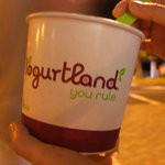 Yogurtland Waikiki Beach