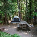 Cougar Rock Campground