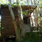 Zdjęcie Melaleuca Surfside Backpackers