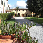 Agriturismo La Palazzina Orchidea Bed & Breakfast