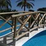 Bridge over pool!