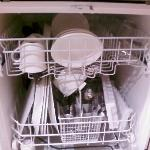 Dishwasher clean: Great Idea. Why don't all other hotels do this?