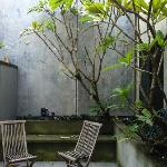 quiet cool private courtyard to  enjoy
