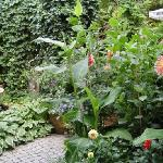  mein garten in berlin
