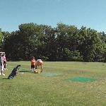 Driving Range at Day