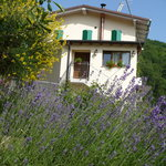 Photo of Bed & Breakfast Solo per Quattro Zocca