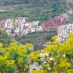 Photo of Hostel Cinque Terre