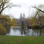  Central park-ny