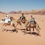 Trekking on Camels Through the Beautiful Desert Landscape