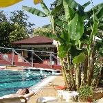  Swiming pool and bar