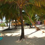Tobacco Caye Lodge
