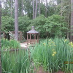 Cape Fear Botanical Garden