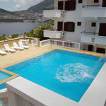 Photo of Pandora Kalkan