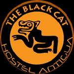 Black Cat Antiguaの写真