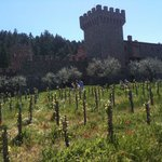 Foto de Reserve Wine Tours - Private Tours