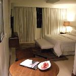  SIA Park suite room