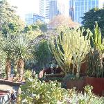 Botanic gardens walk