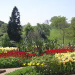 Belsay Hall and Gardens