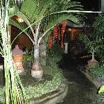 Inner garden around restaurant and Pool