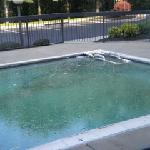  Swimming Pool Picture 2