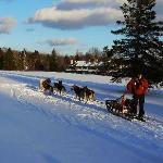 Photo of Gite Parc Mauricie B&B
