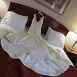 Φωτογραφία: Holiday Inn Express Great Barrington