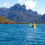 Coral Sea Kayaking - Day Trips