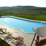The pool facing vineyards / la piscine face aux côteaux