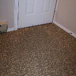  Entry carpet