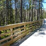  One of boardwalks on Three Eagle Trail