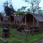 The cabins in the evening