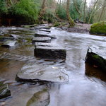 ‪Rivelin Valley Nature Trail‬