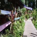 Playa Chiquita Lodge