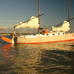 Foto di Thorfinn Expeditions - Day Tours